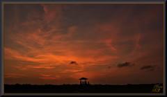 Behind the veil (WanaM3) Tags: wanam3 sony a700 sonya700 texas houston elfrancoleepark park landscape twilight clouds goldenhour outdoors vista sunset
