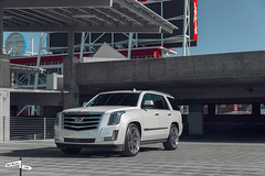 Custom 2017 Cadillac Escalade SUV - Ben Revzin Photography 2017-7 (BenRevzinPhotography) Tags: cadillac cadillacescalade caliwheels rims suv white automotive 2017 escalade
