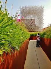 the United Kingdom (SM Tham) Tags: uk flowers italy plants man milan unitedkingdom path vista pavilion beehive flowerbeds metallicstructure expomilano2015
