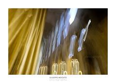 Notre Dame de Paris (imagina (www.giuseppemoscato.com)) Tags: astratto notredamedeparis parigi mosso giuseppemoscato