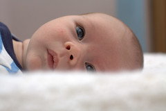 New (iampaulrus) Tags: boy baby color colour digital canon bokeh canon450d paulfargherphotography paulfargher
