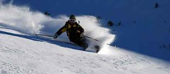 rapide (superskifotos) Tags: ski montagne intense hiver extreme free neige sensations plaisir skier libre poudre homme vite skieur vivre vitesse sensation extrem rapide virage libert randonne glisse poudreuse sportdeglisse sportsd clrit