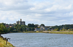 Warkworth Castle and River Coquet (DavidWF2009) Tags: water northumberland warkworthcastle warkworth rivercoquet