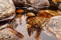 Yosemite River Rocks (Yosemite Love) Tags: california mountains nature rocks yosemite rivers yosemitenationalpark riverrocks ynp tuolumnemeadows sierranevadamountains tuolumneriver californiadrought sonya58 yosemitelove925