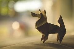 Paper Pup (flashfix) Tags: september302015 2015 2015inphotos nikon d7000 nikond7000 ottawa ontario canada 40mm foldedpaper origami bokeh couch window dog origamidog paper paperart naturallight macro 2minutemacro hbw papillon junmaekawa flashfix flashfixphotography
