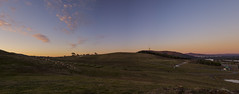 Canberra Arboretum (joshmitterfellner) Tags: trees sunset sky arboretum hills canberra visitcanberra