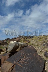 30095308 (wolfgangkaehler) Tags: old animal animals rock asian ancient asia desert deer mongolia centralasia petroglyph gobi reddeer blackmountains petroglyphs mongolian gobidesert southernmongolia