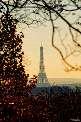 Tour Eiffel (Jose Luis Garcia Tucci) Tags: autumn paris art beauty nikon europa europe artistic eiffeltower eu eiffel best toureiffel prelachaise highquality parisphoto nikonphotography ladamedefer jlgarciatucci nikond610