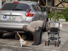 Eat At Home / Come on little ladies (kasa51) Tags: street people japan cat oldwoman atami
