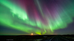 Aurora Borealis (D151424b) (icelander) Tags: lights aurora nordic polar borealis nordlys norurljs