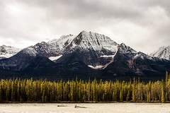 Snowy top. (knnku) Tags: park autumn trees snow canada mountains cold fall river rockies october jasper canadian mount banff 2015 kenniku