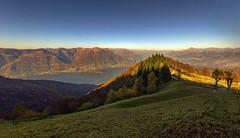 Lake Como (Fil.ippo) Tags: autumn tree fall water landscape bellagio lakecomo autunno brianza filippo lagodicomo prealps d7000 filippobianchi