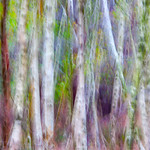 Horsell Abstract 1