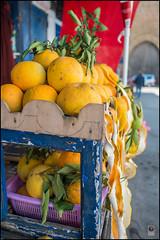 Marokko2015-Rabat-16 Kopie (kurvenalbn) Tags: ma marokko rabat rabatsalézemmourzaer