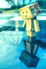 """Toy Story    """"Sadly, retrospectively."""" (randyfoo) Tags: yotsuba danbo toyphotography revoltech danboard"""