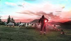Calendario2016 (Jabi Artaraz) Tags: sol nature landscape restaurante natura perro amanecer zb montaña pastor calendario rebaño anboto pastoreo euskoflickr jartaraz basaguren
