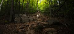 Sheck (ssgmacdawg12345) Tags: adirondacks adirondack mountain mountains new york ny us isa nikon d7100 shane garlock nature stunning vivid cool park