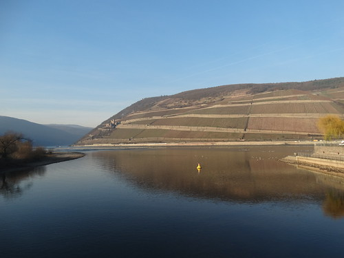 Bingen- River Nahe meets the Rhine