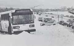 Cars and a bus are stuck along a Denver area highway. (Rocky Mountain News / Denver Public Library Archives)