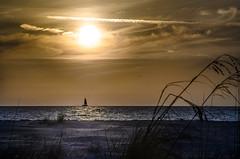 Seagrass at Sunset (lleon1126) Tags: annamariaislandfloridasunset beach seagrass sailboat boat ocean seascape