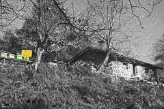 Baias Ibaia, Sarria, Zuia, Araba, Euskal Herria (Basque Country). 2016.12.29 (AnderTXargazkiak) Tags: baiasibaia sarria zuia araba euskalherria basquecountry baskenland zuriaetabeltza blackandwhite blancoynegro monocromático ander andertxrekordseh andertxargazkiak txrekordseh