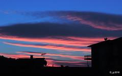 ALBA DALLA MIA FINESTRA / SUNRISE FROM MY WINDOW - DSCN9590-001 (papamillo) Tags: alba sunrise nuvole clouds cielo sky luce nikon papamillo prealpi paesaggi panorama panoramica allaperto colori coolpixp520 d dallamiafinestra blu blue inverno w italy italia bellitalia