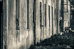 Campo delle Fraschette (Abulafia82) Tags: pentax pentaxk5 k5 2016 abulafia ciociaria lazio italia italy alatri fraschette campodellefraschette campodiconcentramento concentrationcamp campodiinternamento internmentcamp fascismo fascism storia history secondaguerramondiale secondworldwar abbandono biancoenero bianconero bn monocromo blackandwhite blackwhite monochrome viraggio