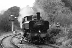 6412 GWR 0-6-0PT pannier tank engine (Roger Wasley) Tags: 6412 gwr 060pt south devon railway great western pannier tanks buckfastleigh steam locomotive railways train tank engine mono monochrome black white bw