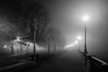 A Foggy Night in Charleston 2017-15 (King_of_Games) Tags: charleston chs southcarolina sc longexposure fog foggy night waterfrontpark