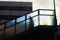 光の認識 (萬名 游鯏(ヨロズナ) / Yorozuna) Tags: pentaxsupertakumar50mmf14 曙橋 akebonobashi 新宿区 shinjukuward 東京都 tokyo japan 歩道橋 pedestrianbridge 階段 steps stairs 光 逆光 light 影 シルエット silhouette 朝 morning