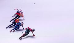 WK shorttrack 2017 in Ahoy (Bart Weerdenburg) Tags: shorttrack ahoy sjinkie knegt sport sports action movement photography speedskating ice speed skating