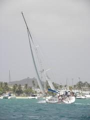 345-DSCN9841 (eric15) Tags: sea beach water race cat for boat eva surf sailing wind offshore sailors luna aruba international dash sail regatta sailor optimist sunfish oranjestad surfside