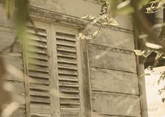 Au 26 de la rue Chralerois (cedric.harbulot) Tags: en house heritage architecture centennial nikon colonial sigma des maison nouvellecaldonie newcaledonia bois centenaire patrimoine valle coloniale colons nouma 18250mm d5300