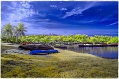 Don't leave 'em stranded (_Opit_) Tags: lake nature landscape boats landscapes transport lakeside putrajaya stranded wetland putrajayamalaysia wowiekazowie