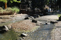 stream in St. Francis Park
