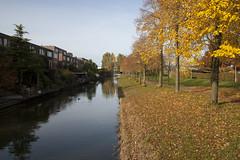 Floriade_251015_33 (Bellcaunion) Tags: park autumn fall nature zoetermeer rokkeveen florapark