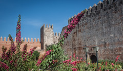 04 Rabat 2015-003 (richandalice) Tags: gardens morocco rabat oudaya