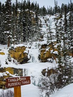 Frozen - Tangle Falls
