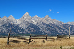 Happy Fence Friday   Grand Tetons (Wonder Woman !) Tags: usa wyoming grandtetons friday tetons fench