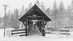 Bridge @ Solden (Austria) (PaulHoo) Tags: lumix solden austria 2017 winter city urban bw bridge blackandwhite nik symmetry silverefex snow cold trees village tirol otztal