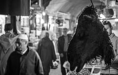 Llueven verdades de punta de lanza (amoguan) Tags: maroco morroco fez fes market black blackandwhite