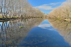 Winter sunny reflexion