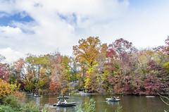 _DSC4065-HDR (purin_cess) Tags: centralpark 2016 autumn 11月 十一月 秋 中央公園 紐約 ny newyork