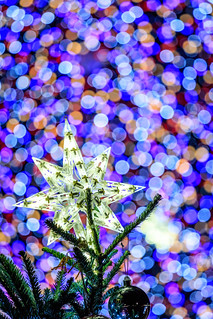 Macro Mondays -   Holiday Bokeh
