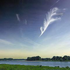 Plume d'Ange, Encre de Loire (pom.angers) Tags: panasonicdmctz30 2013 september bouchemaine angers lapointe 49 maineetloire paysdelaloire france europeanunion loirevalley 100