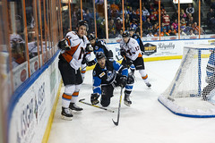 "Missouri Mavericks vs. Wichita Thunder, January 7, 2017, Silverstein Eye Centers Arena, Independence, Missouri.  Photo: John Howe / Howe Creative Photography • <a style=""font-size:0.8em;"" href=""http://www.flickr.com/photos/134016632@N02/31872459180/"" target=""_blank"">View on Flickr</a>"