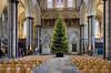 Salisbury Cathedral - Christmas 2016 Tree (i.knox11) Tags: cathedral church england nikon1755mmf28 salisbury salisburycathedral unitedkingdom wiltshire christmas