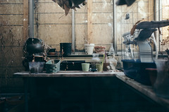 the.human.scale (jonathancastellino) Tags: toronto abandoned derelict decay garden apartment apartments ruin ruins growth leica q potted pot plant plants leaf leaves table death