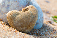 Coeur Normand (sdupimages) Tags: stone beach plage coeur heart macromondays