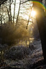 Early morning sunrise (michelbosma) Tags: buiten ijs morning nature sunrise cold ice natuur ochtend outdoors water winter zonsopkomst apeldoorn gelderland netherlands nl